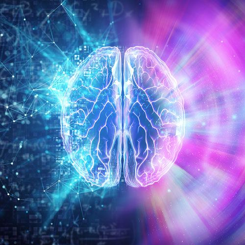 Performance cérébrale