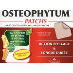 Les 3 Chênes Osteophytum Patchs x14