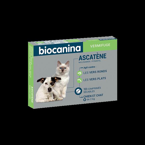 Ascatène Vermifuge chien et chat 10 comprimés.  au meilleur prix| Biocanina
