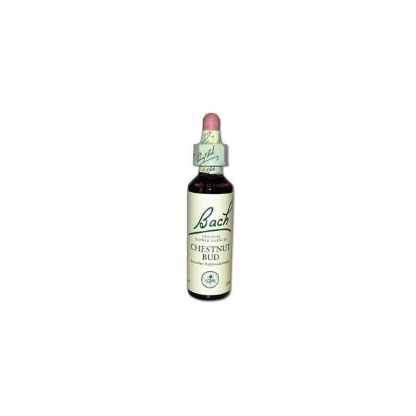 riginal  Chestnut Bud (Bourgeon de Maronnier) 07 à prix discount  Fleurs de Bach