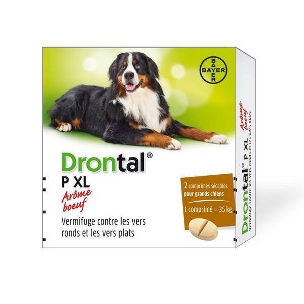 al P XL 2 comprimés vermifuge chiens arôme boeuf moins cher  Bayer Véto