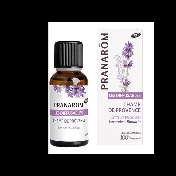 Champs de Provence de Prananrôm