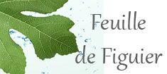 Feuille de Figuier - Roger Gallet