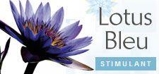 Lotus Bleu - Roger et Gallet