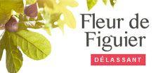 Fleur de Figuier - Roger et Gallet