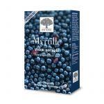 New Nordic Myrtille 30 Comprimés