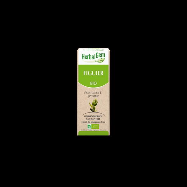 Figuier Bio Herbalgem 30ml